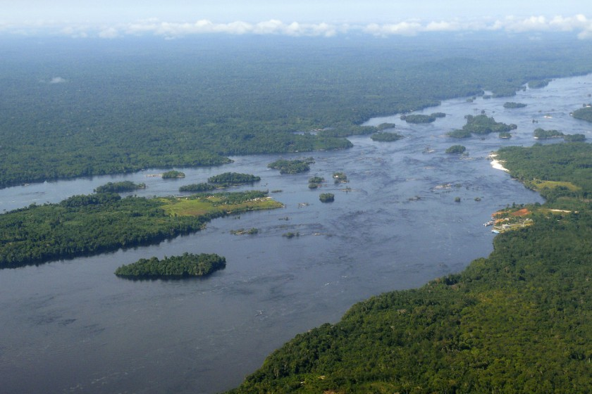 The endless Amazon rainforest