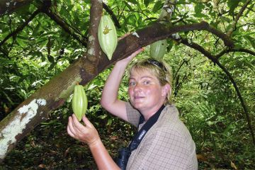 Heike and wild-growing cocoa near the old cabóclo plantation