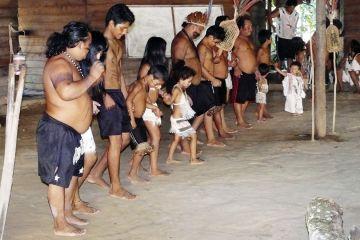 Sateré-Mawé community